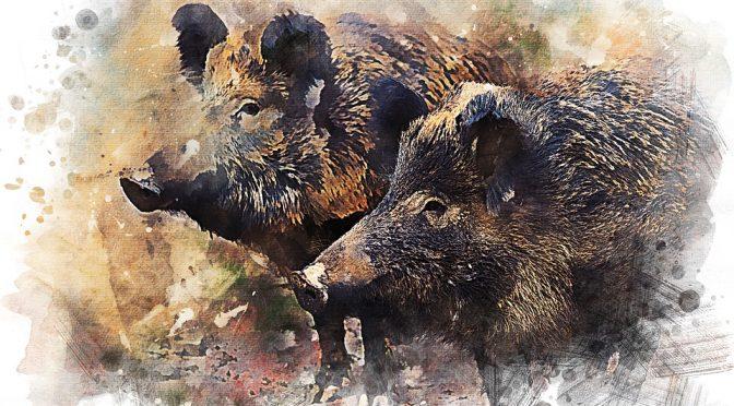 Vortragsankündigung 2018 Prag: Hunters and Wild Boar